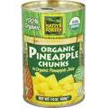 Pineapple Chunks, 6 of 14 OZ, Native Forest