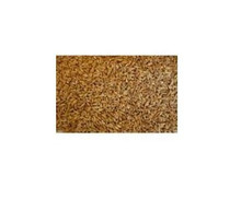 Farro 11 LB From GRAINS
