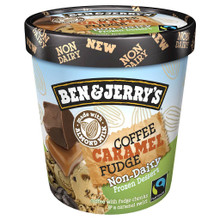 Coffee Caramel Fudge 8 of PINT By BEN & JERRY`S