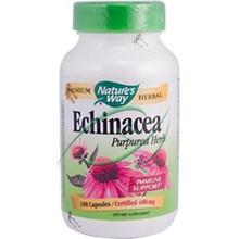 Echinacea Purpurea Herb 400 mg 180 Capsules From Nature's Way