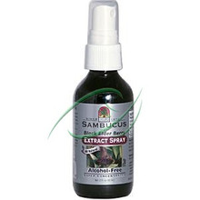 Sambucus Black Elder Berry Extract Spray Alcohol-Free 2 fl oz (60 ml) From Nature's Answer
