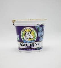 Blueberry, 12 of 6 OZ, Redwood Hill Farm