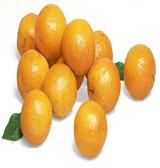 Cara Cara Navel Oranges - 5 lb