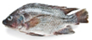 Fresh Whole White Perch -lb