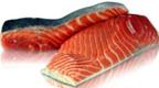 King Salmon Fillet -1lb.