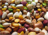 15 Beans -20 oz