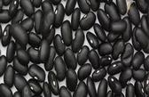 Black Beans -16 oz