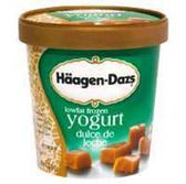 Haagen Dazs Low Fat Frozen Yogurt Dulce De Leche-14 fl oz