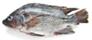 Fresh Opah Fillet (Moonfish) -lb
