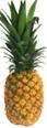 Fresh Organic Gold Pineapple -ea