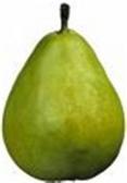 Bosc Pear - lb