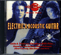 Twiddly Bits: Volume Three -- Acoustic & Electric Guitar (IBM)