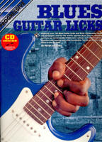 Progressive Blues Guitar Licks