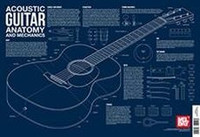 Acoustic Guitar Anatomy and Mechanics Wall Chart