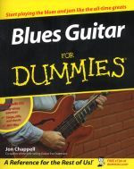 Blue Guitar For Dummies