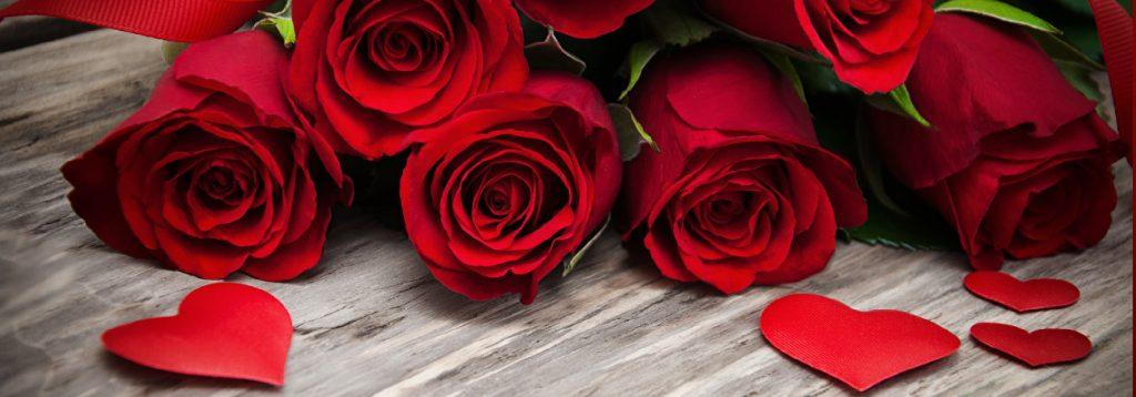 ecuadorian-roses-manila-banner.jpg