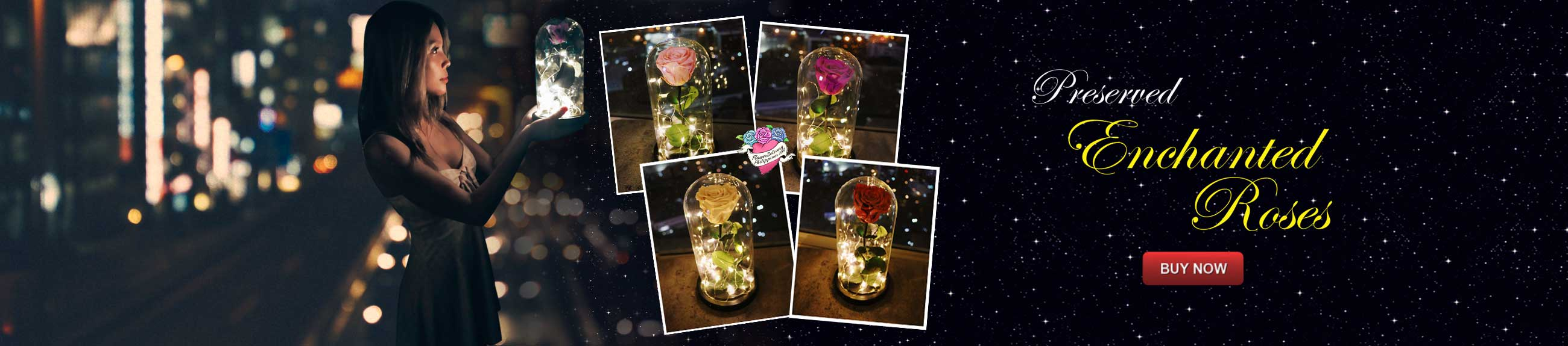 preserved-roses-dome-banner-philippines.jpg