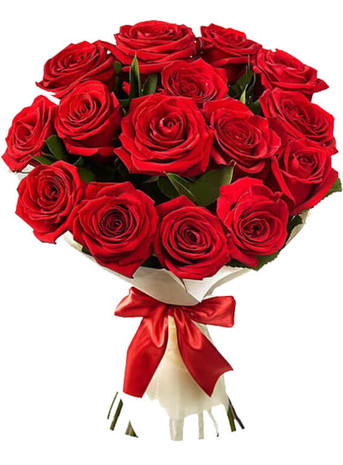 12 Red Luxury Ecuadorian Roses