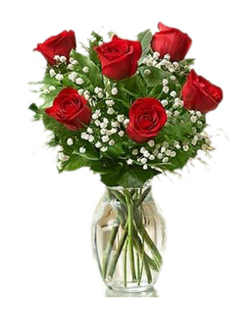 6 Red Ecuadorian Roses Bouquet