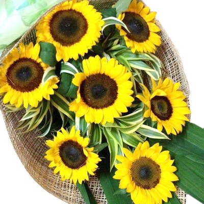 7 Sunflower Bouquet
