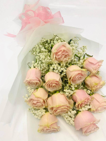 12 Pink Ecuadorian Roses