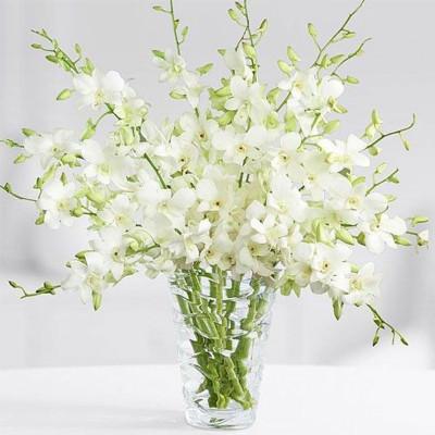 Grand White Orchids Bouquet