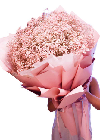 Pink Baby's Breath Million Star Giant Bouquet