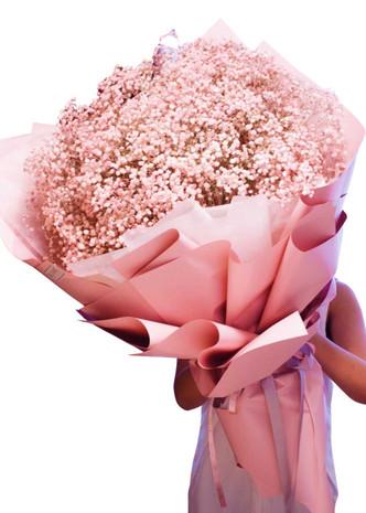 Pink Baby's Breath Million Star Giant Bouquet