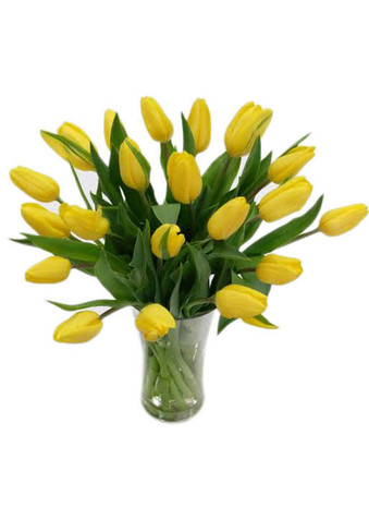 15 Yellow Tulips Bouquet