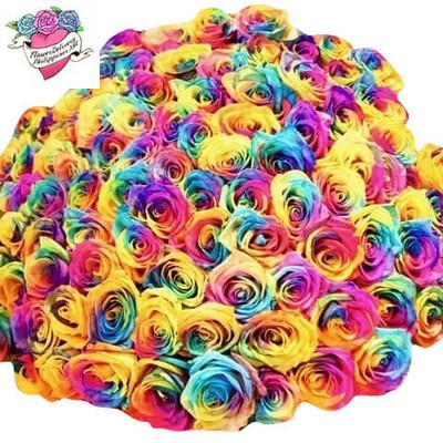 100 Rainbow Ecuadorian Roses Giant Bouquet