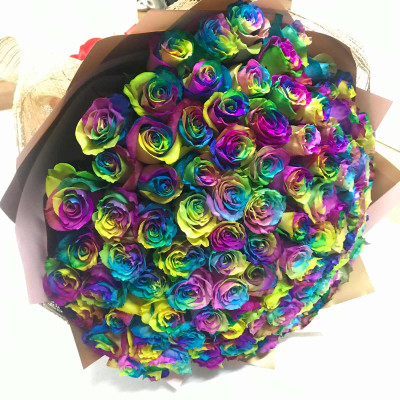 100 Rainbow Ecuadorian Roses Giant Bouquet