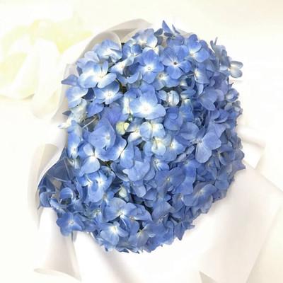 Blue Hydrangeas Bouquet