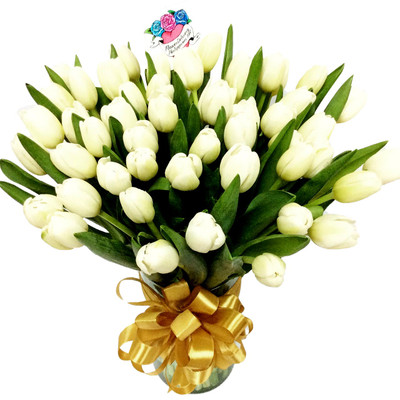 50 White Tulips Grand Bouquet
