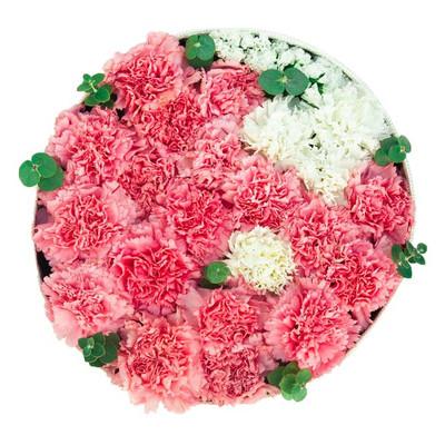 Carnations Round Box