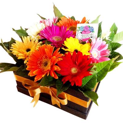 Rainbow Gerbera Daisies Box