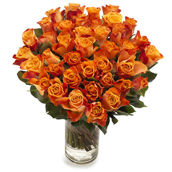 36 Korean Orange Roses Bouquet