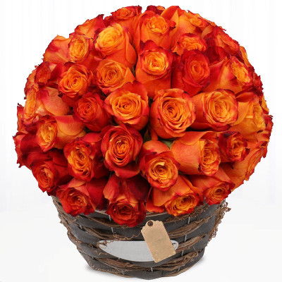 48 Korean Orange Roses Basket