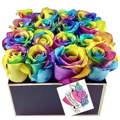 16 Rainbow Ecuadorian Roses Box
