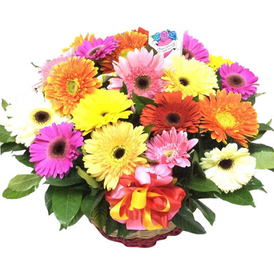 Rainbow of Daisies Basket