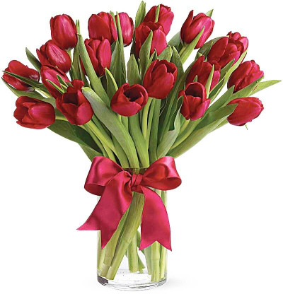 20 Red Tulips Bouquet
