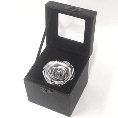 Silver Ecuadorian Preserved Boxed Rose