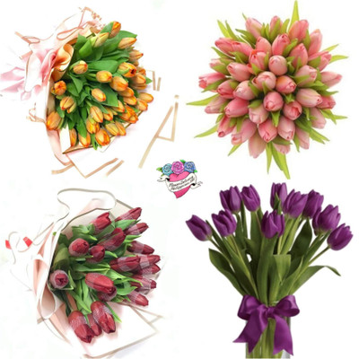 Mother's Day Holland Tulips