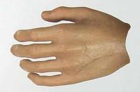 Prince of Persia: Prince Dastan - Left Bare Open Hand