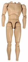TrueType: Caucasian Male Narrow TTM18 - Nude Body