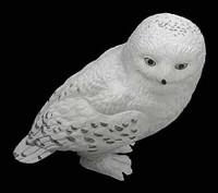 Harry Potter: Sorceror's Stone: Harry - Owl
