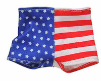 Dennis Rodman - USA Nylon Shorts