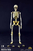Coo: Skeletons - BS001 Skeleton (Standard Color) Boxed Fully Poseable Figure