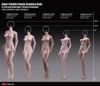 Super Flexible Female Seamless Body (PLMB2018-S25B) (Medium Bust - Suntan - Fitness Physique) - Boxed Figure