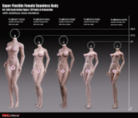 Super Flexible Female Seamless Body (PLMB2018-S26A) (Medium Bust - Pale - Slim Physique) - Boxed Figure
