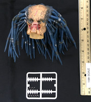 AVP: Elder Predator V1 - Head (No Neck Joint) w/ Spines (See Note) (AS-IS)